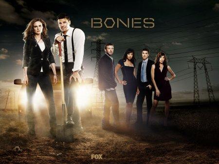 Когда выйдет 10 серия 11 сезона сериала Кости?