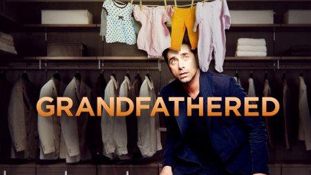 Когда выйдет 15 серия 1 сезона сериала Дедушка?